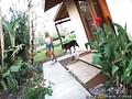 Aline Brazzers Network clip 8