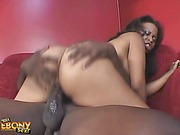 Cock loving ebony