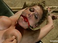Felony sex-and-submission trailer 28