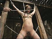 Annie Cruz hog-tied video 7