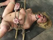 Jenni Lee hog-tied xxx 11