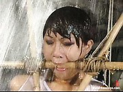 Dragon Lily water-bondage movie 12