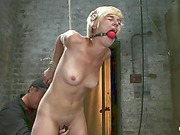 Chloe Camilla hog-tied trailer 9