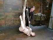 Madison Young Hog Tied xxx 7
