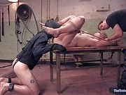 Hollie Stevens The Training Of O trailer 23