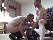 Gay dick sucking action with Jerrod Vega and Damon