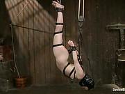 Juliette March Device Bondage trailer 41