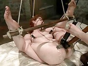 Justine Joli Hog Tied trailer 38