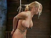 Blake Rose Hog Tied xxx 49
