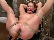 Roxy Raye Hog Tied clip 28